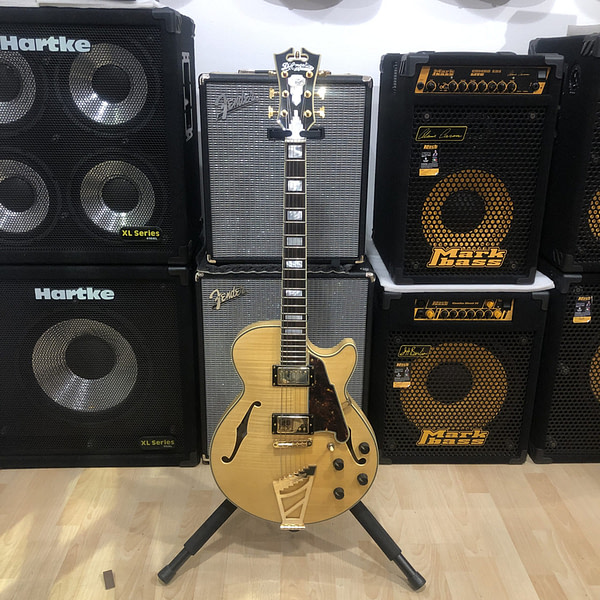 D'Angelico EX SS Nat